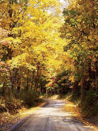 hudson-valley-new-york-fall-upstateny111