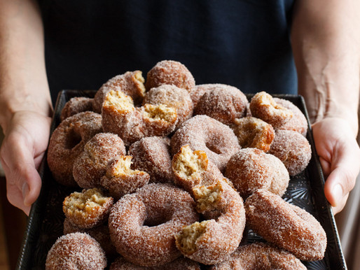 Best Cider Donuts in the Hudson Valley.