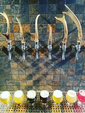 beer-lineup-at-the-tastingjpg