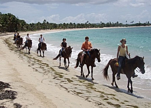 horse riding along Caribbean Ocean