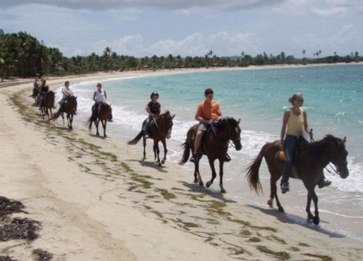 horse riding along Caribbean Ocean