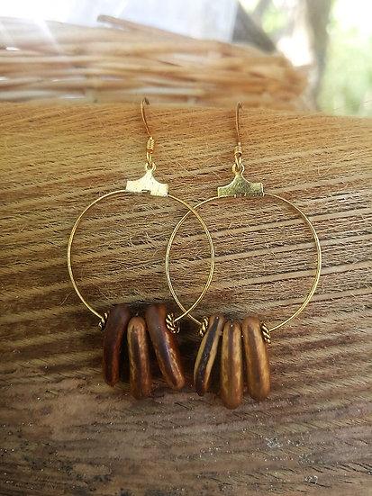 Gold Hoop Natural Flamboyan Exotic Seed Earrings