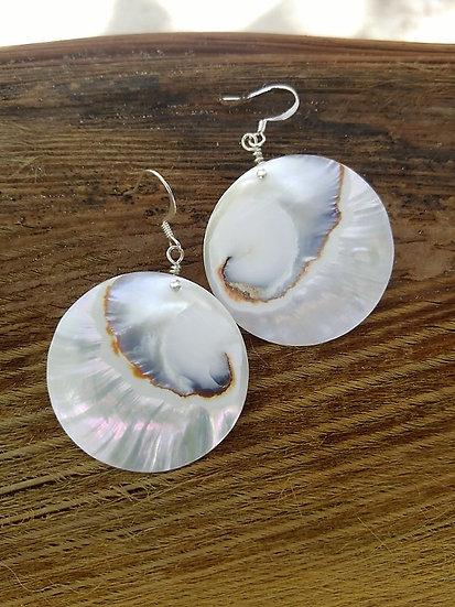 Sexy White Round Chic Nautilus Shell Earrings