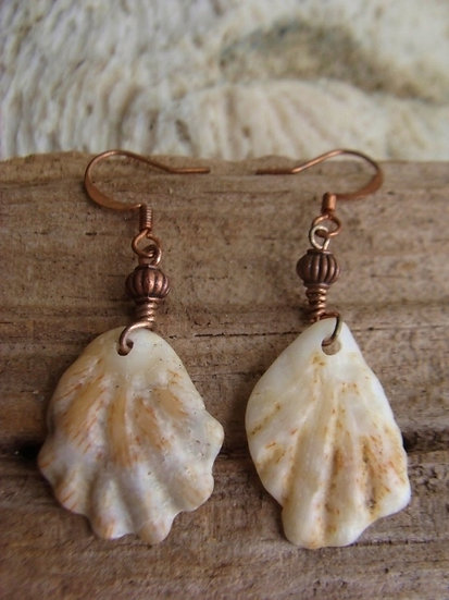 Ocean Tumbled Affordable Vieques Sea Shell Earring