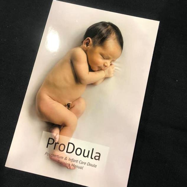 Evidence Based Postpartum Doula Training