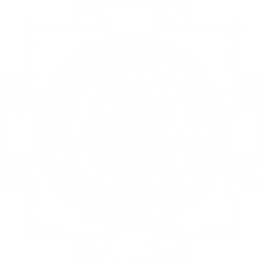 Sri Yantra used for Astrology