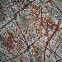 Forest Brown.jpg