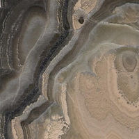 Oynx Fossile.jpg