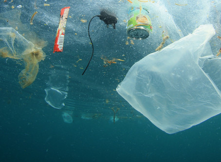 What's a solution to Microplastic pollution?