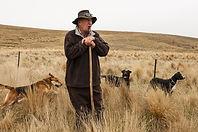 ZQ NZ merino farmer.jpg