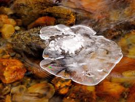 Ice_Over_Stones_2.jpg