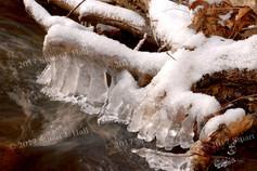Snow_Ice_Wood_6_122906.jpg