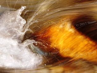 Flow_0300_022408.jpg