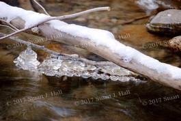 Snow_Ice_Wood_5_122906.jpg