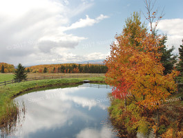 View_from_Covered_Bridge_Cabot_0126_100608.jpg