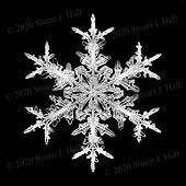 Snowflake Image 30 18F