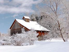 Top_of_Krug_Rd_Undrhll_Ctr_Winter.jpg