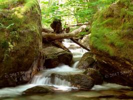 Twin_Boulders_135_062505.jpg