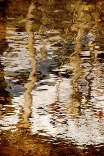 Snowbank_Reflections.jpg