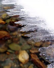 Leaf_Like_Ice_I11_022806.jpg
