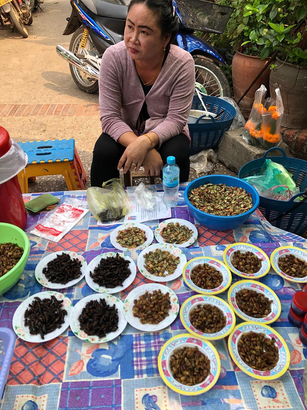 bugs insects morning market laos luang prabang