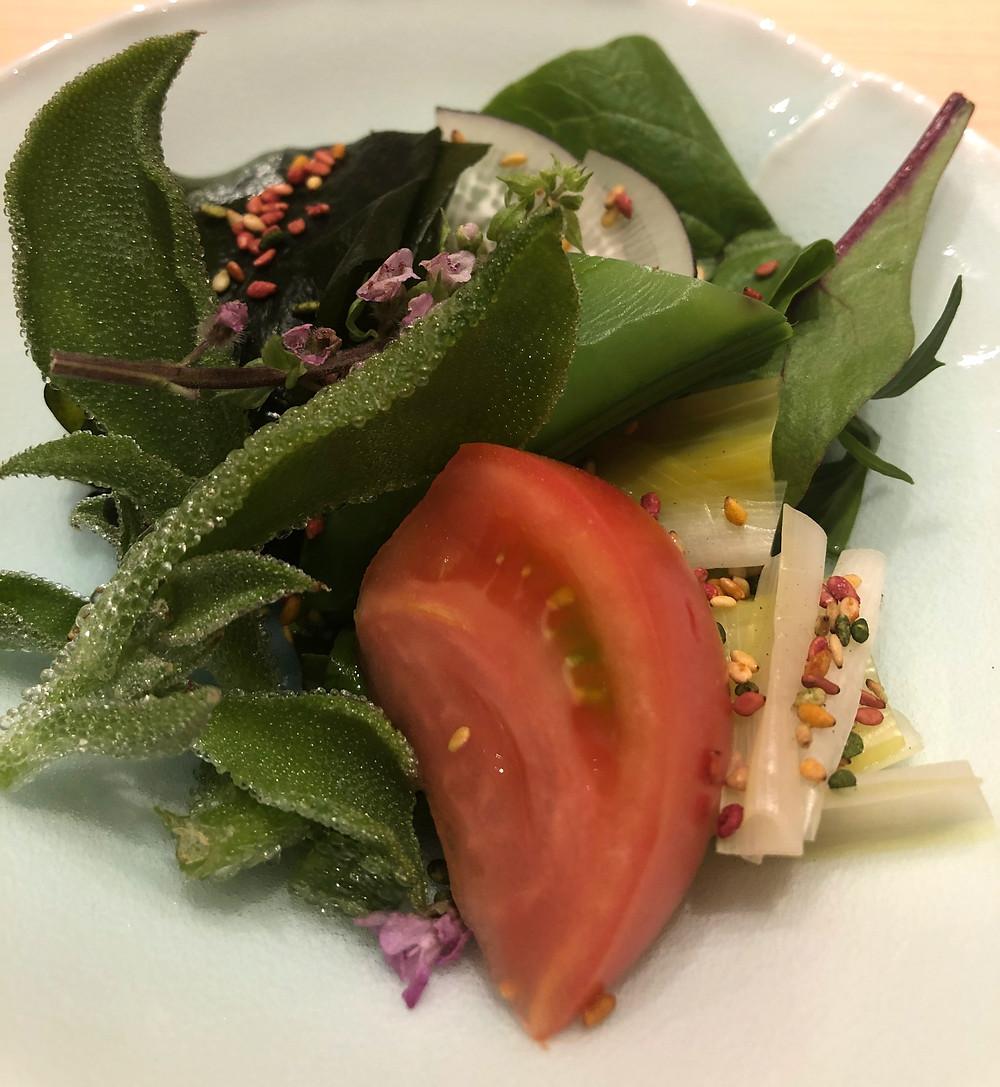 salad ice plant tomato
