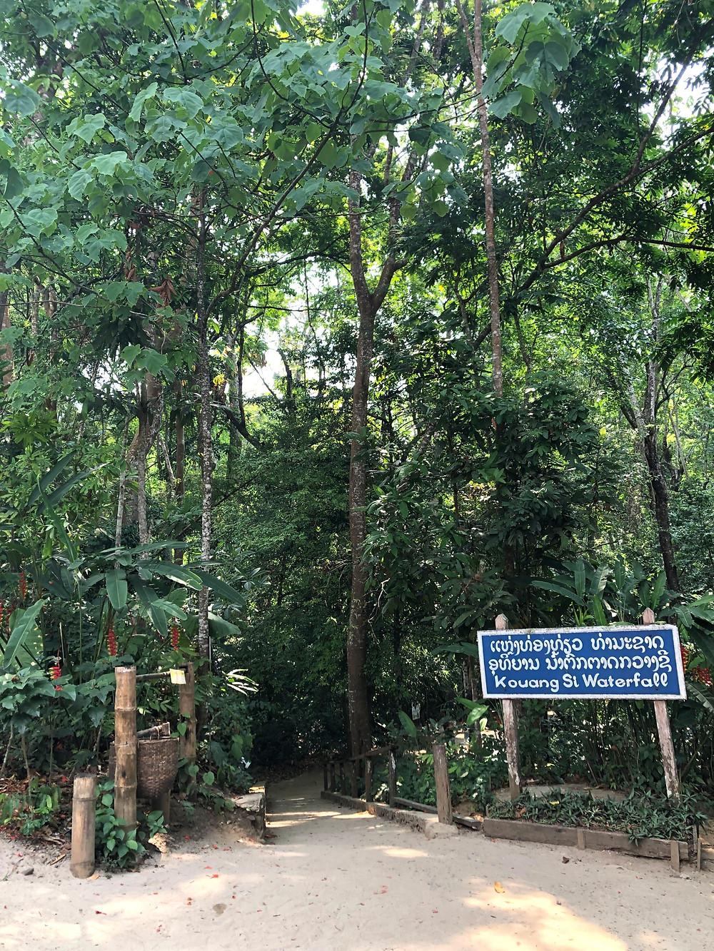 Kuang Si waterfall laos luang prabang