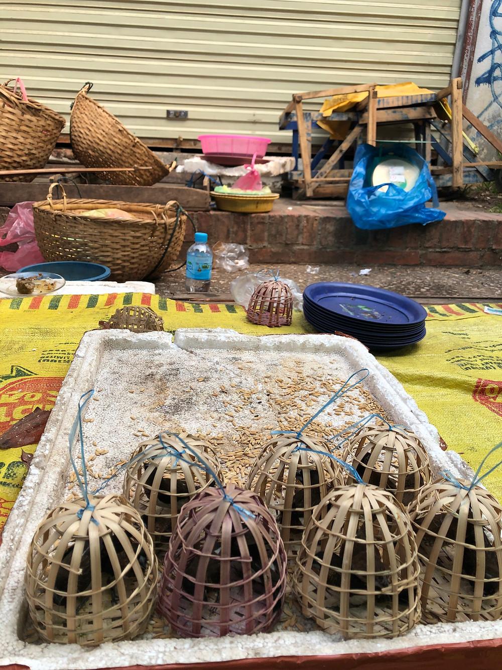 birds morning market laos luang prabang