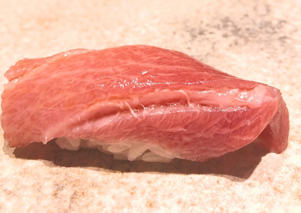 chutoro tuna fish sushi