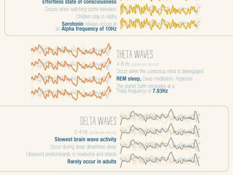 How does music touch your brain?  Check it out!