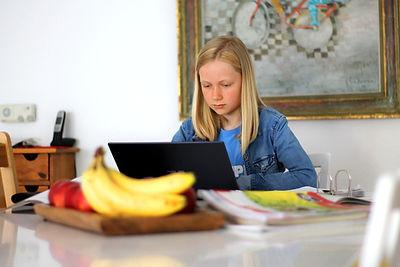 homeschooling-5121262_1920.jpg