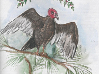 The Christmas Vulture