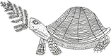 turtle%2520new%25201_edited_edited.png