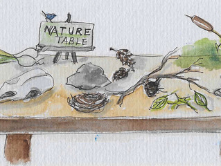 What's On The Nature Table?