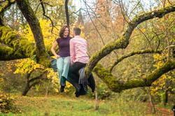 Tree picnic