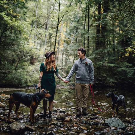 Kelley and Davis' Adventurous Elopement at Homesite Creek, Sunshine Coast, BC