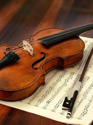 Learn From Home How To Play Violin And Fiddle