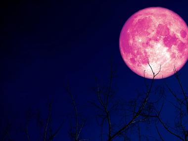 Rare Pink Super Moon