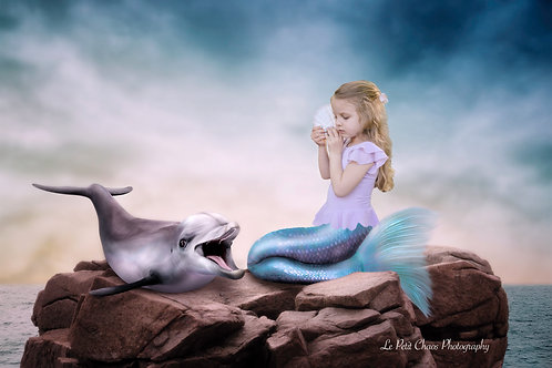 Mermaid with Dolphin composite