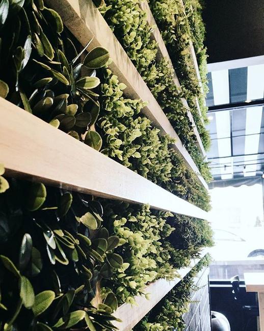 Greens and Grains_'_'_'_'_'_#green #wood