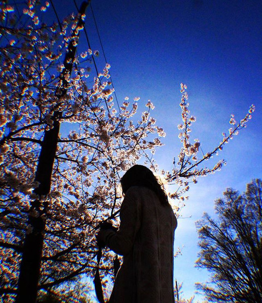 Whatsup Spring _.jpg