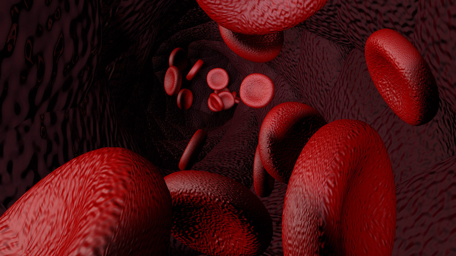 BloodCellWalls.jpg