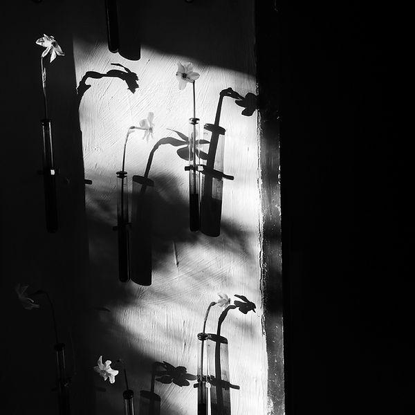 Jean-Luc Bichaud | In situ | Galerie Kamila Regent | Printemps 2016
