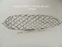 """Projet """"L'étoile de pin"""""""