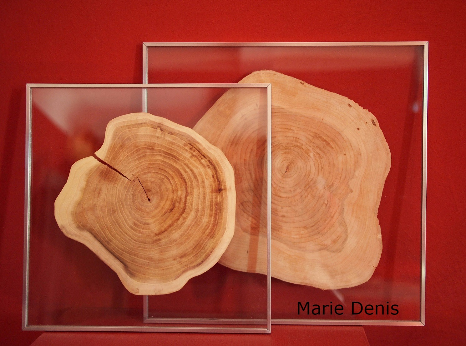 Marie Denis