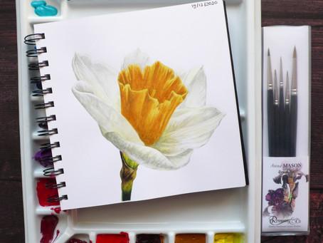 Anna Mason Daffodil