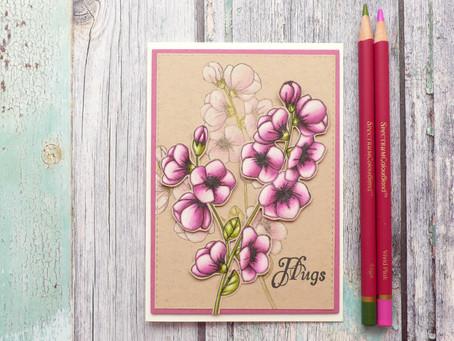 Four Coloured Pencils Card with Spectrum Noir