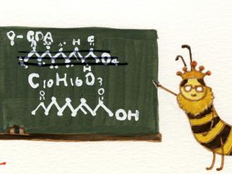 ハチ博士のミツバチコラム(38)女王物質
