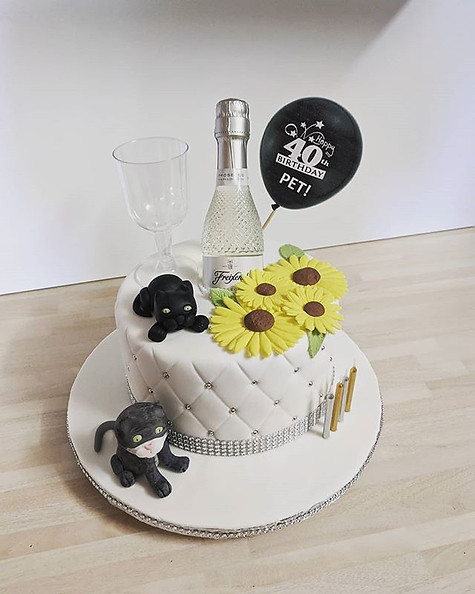 NOVELTY CAKE DESIGNS