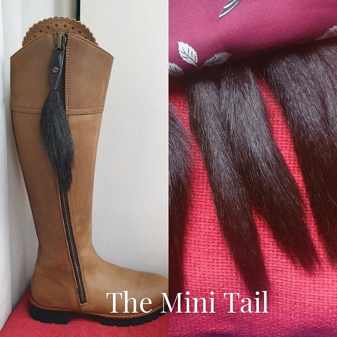 1a) The Mini Tail